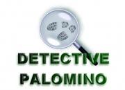 Perú: (detective privado palomino) cusco, abancay…