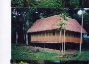 Lodge turistico-tambopata