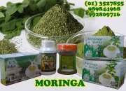 Harina de moringa (semilla de moringa)