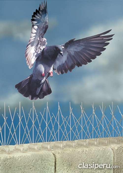 Puas antipalomas y aves