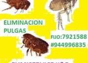 Empresa que fumiga insectos,plagas, empresa que f…