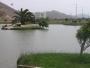 Terrenos de Playa en San Antonio, Cañete
