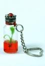 SOUVENIR - Mini Plantas -