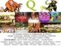 QULQI PRODUCTORA DE EVENTOS