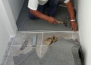 Reparación de persianas, alfombras,estores,cortinas
