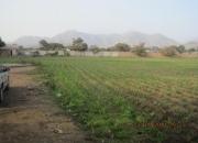 Vendo terreno en Casa Blanca - Pachacamac