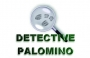 Perú: (Detective Privado Palomino) Cusco, Abancay, Puno