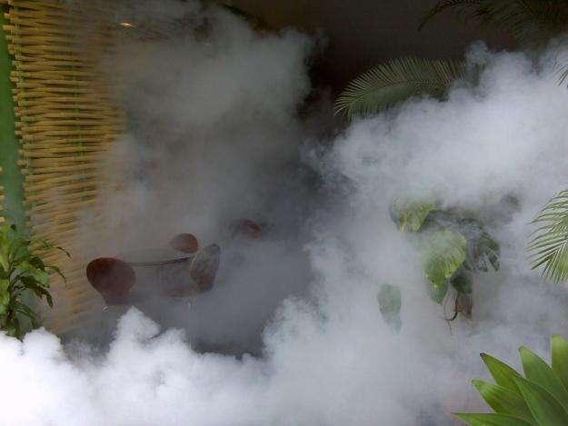 Fumigacion la molina 792-0365 / 957912887
