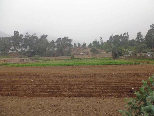 Vendo terreno carapongo huachipa 1300m2