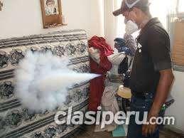 Exterminamos con vapor a los chinches de cama - fumigacion limaexterminamos con vapor a los chinches de cama - fumigacion lima