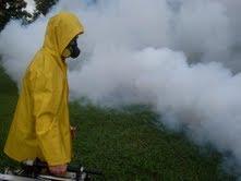 Fumigaciones con productos biodegradablesfumigaciones con productos biodegradables
