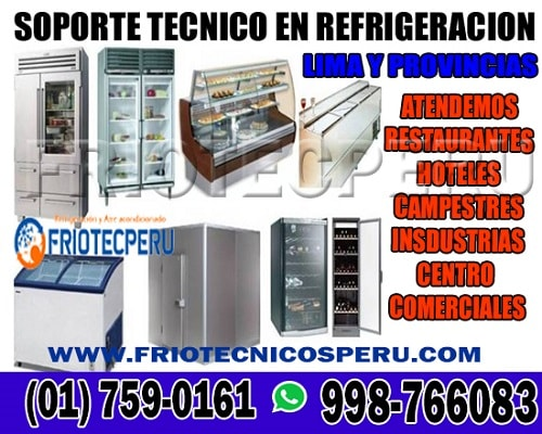 Reparaciones técnicas para conservadoras / mantenimiento 998766083