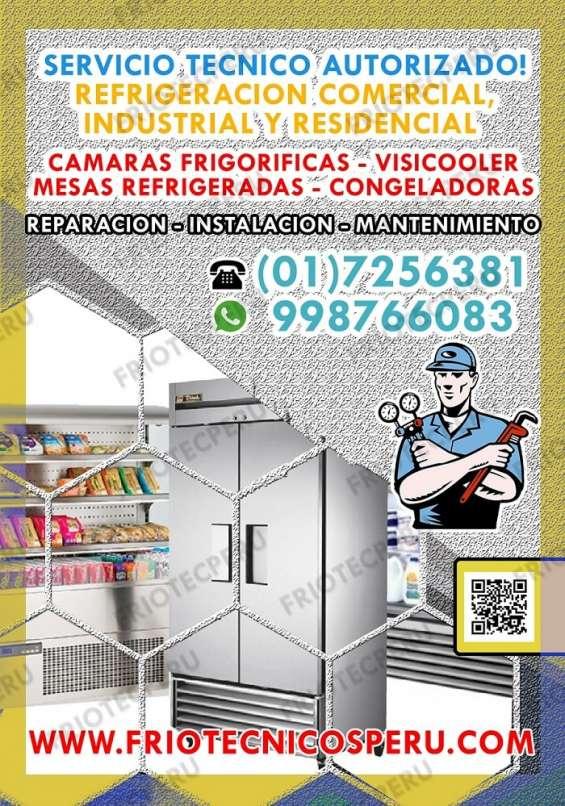 Soluciones técnicas de congeladoras a domicilio / friotec perú